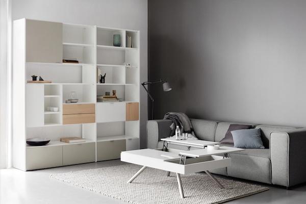 Bibliothèque et table basse
